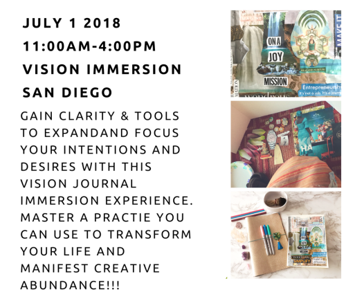 VisionImmersion FB3